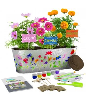 Paint & Plant Flower...